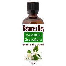 Jasmine Glandiflora