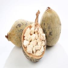 Baobab Protein